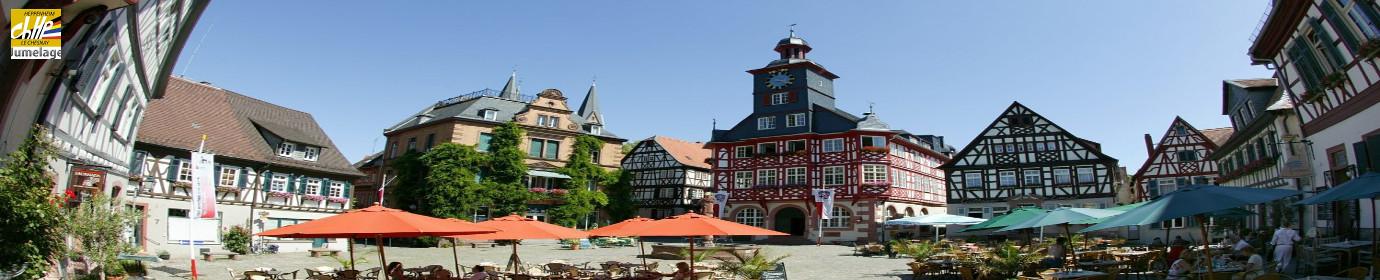 Association Européenne de jumelage Le Chesnay-Heppenheim
